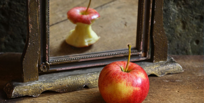 Mirror of Perception